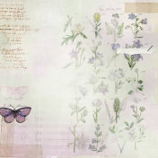 Butterflies And Flowers- Pattern Paper 3