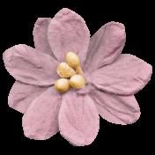 Burgundy flower