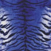 Kitty Love Paper- Tiger Skin
