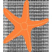 Summer Splash Illustrations 1 Seastar