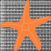 Summer Splash Illustrations 1 Seastar 2