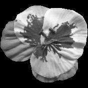 Flower 143 Template