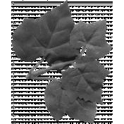 Leaf 061 Template