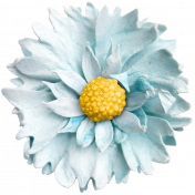 Self Love Elements Kit - Flower01