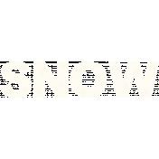 BICOsnowwa