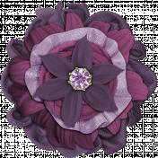 September Flower #08
