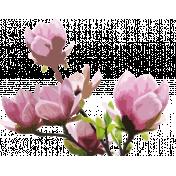 Magnolia 1-embellishment