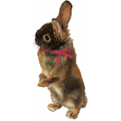 Bunny brown painted with bow