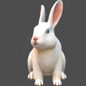 3D-Angora rabbit white-1