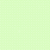 green paper8