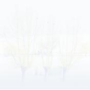 mudsa-magic winter-pap 40