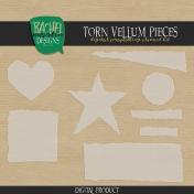Torn Vellum Pieces