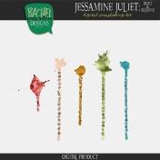 Jessamine Juliet: Sequins & Paint