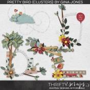 Pretty Bird (Clusters)