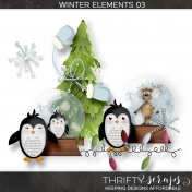 Winter Elements 03