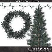 Winter Elements 04