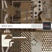 Color Basics- Brown Kit