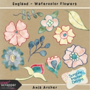 England- Watercolor Flowers