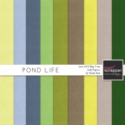 Pond Life Solid Papers Kit