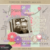 Forever Friends Mini Kit