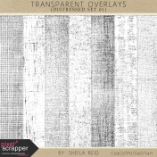 Transparent Overlays- Distressed Set 01