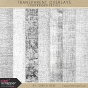 Transparent Overlays- Distressed Set 02
