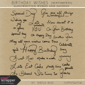 Birthday Wishes Sentiments Kit