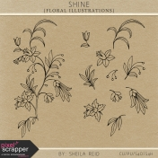 Shine Floral Illustrations Kit