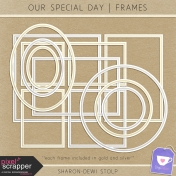 Our Special Day- Frames