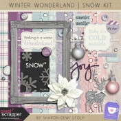 Winter Wonderland- Snow Kit