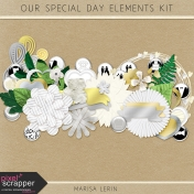 Our Special Day Elements Kit