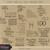 Our Special Day Word Art Kit