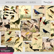 African Ephemera Kit- Birds