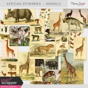African Ephemera Kit- Animals