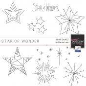 Brush Kit #27- Star of Wonder