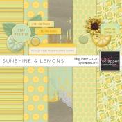 Sunshine & Lemons Mini Kit