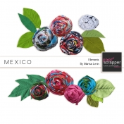 Mexico Flowers Kit