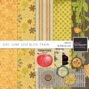 DSC June 2012 Blog Train Kit