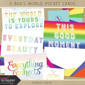 A Bug's World Pocket Cards Kit