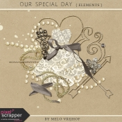 Our Special Day- Elements