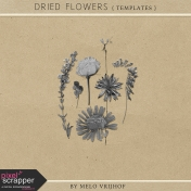Dried Flowers- Templates