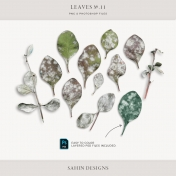 Leaves No.11