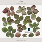Leaves No.12