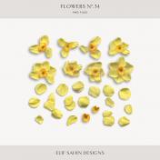 Flowers No.34