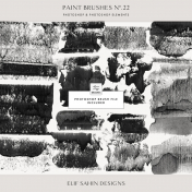 Paint Brushes No.22