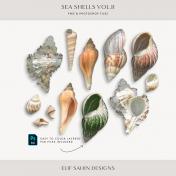 Seashells Vol.II