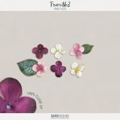 Flowers No.03