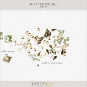 Scatter Bits No.1