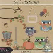 Owl Autumn Elements