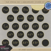 Our Special Day- Anniversary Sticker Kit